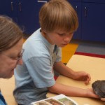 A turtle shell being inspected in firstday school
